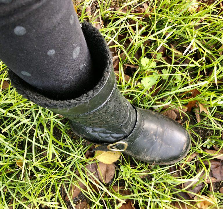 Afbeelding voor Offset your carbon footprint